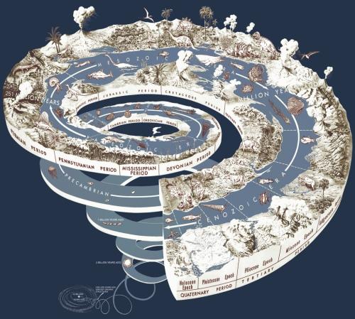 Evolution_spiral