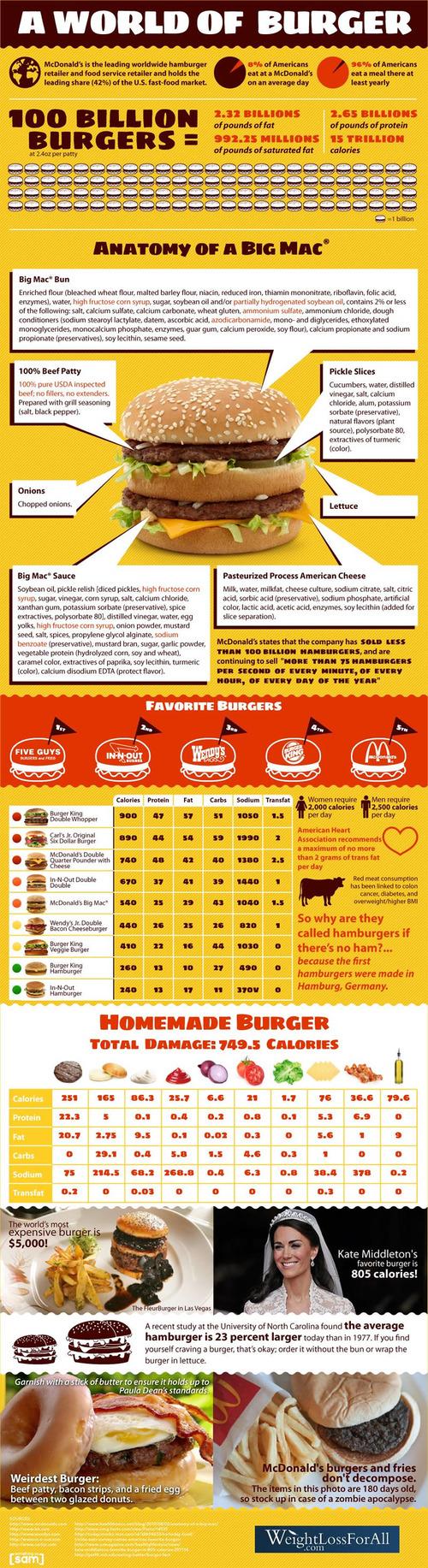 Theworldofburgers